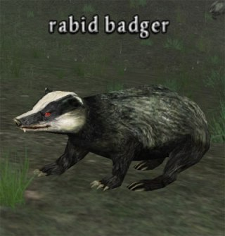 bg-rabid-badger
